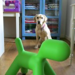 Magis Puppy Chair2