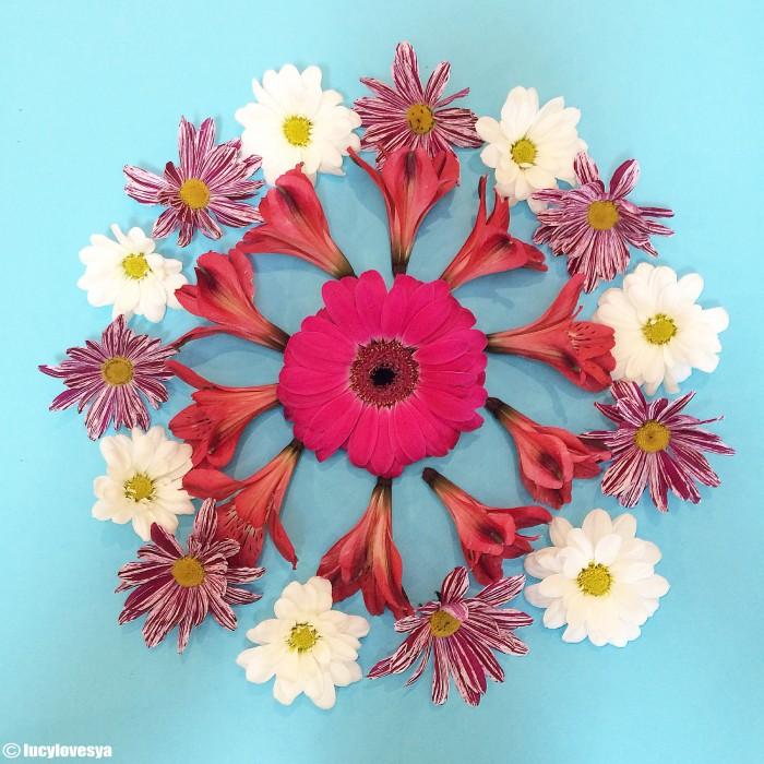 Flower Formation