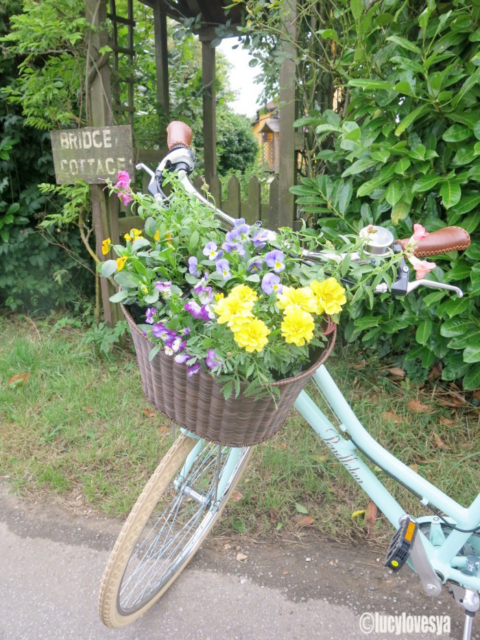 Bike Flowers 2