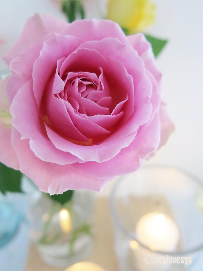 LSA Stilt Vase Rose