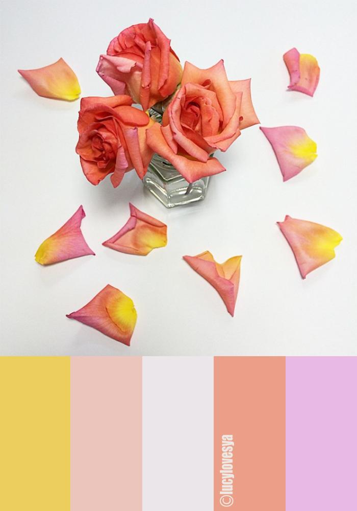 september palette shades