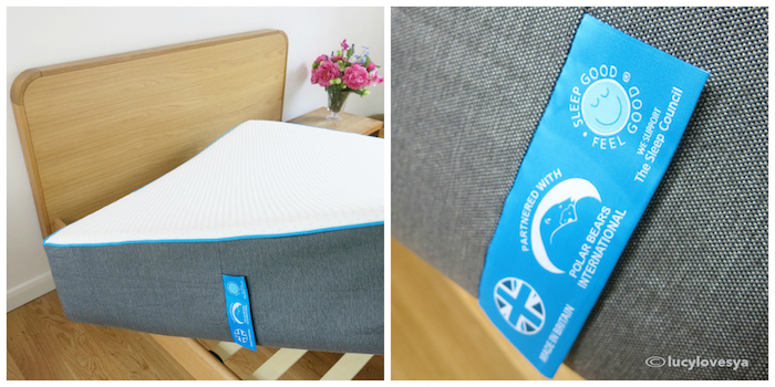SleepBear Mattress Review Guest room