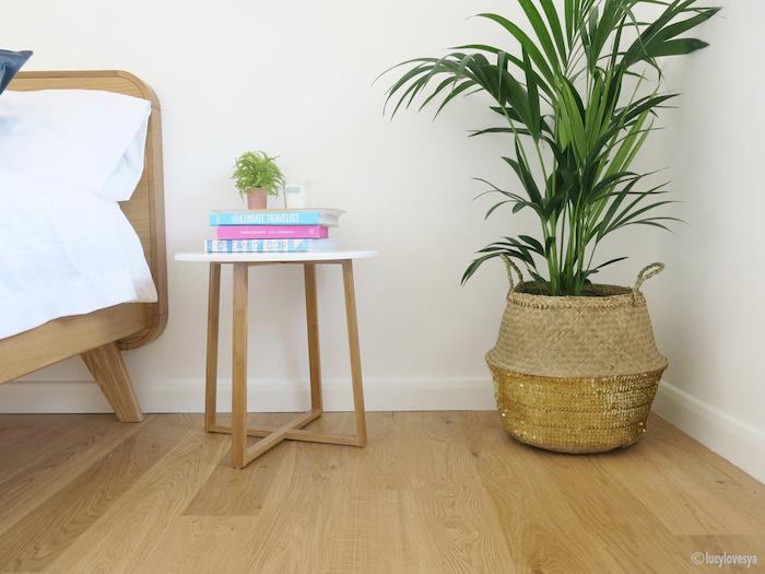 Wooden Flooring Bedroom Tropical Plant