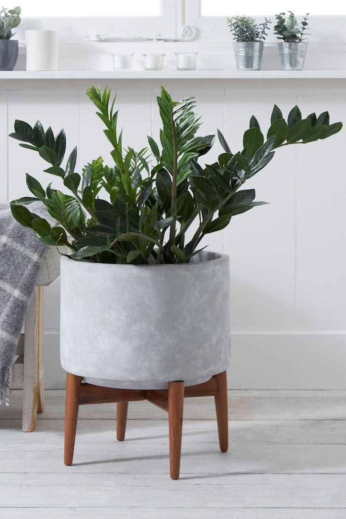 planter cement style with legs next