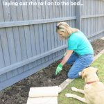 Soil preparation gardening garden on a roll ideas tips