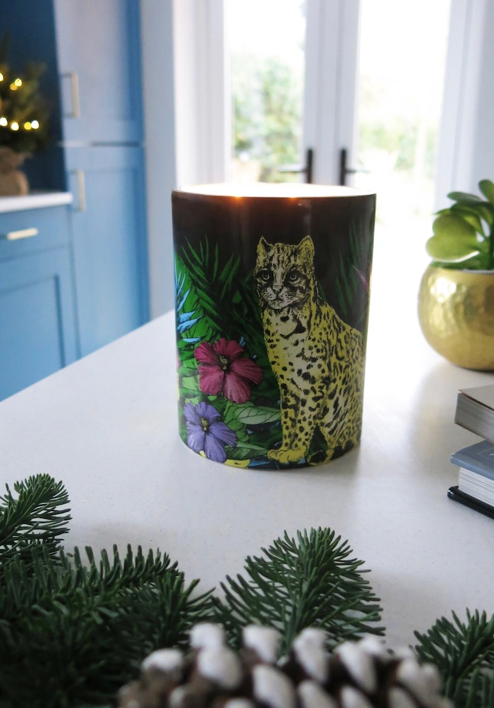 matthew williamson midnight jungle candle giveaway on blog tropical scent