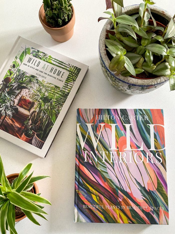hilton carter books houseplant care diy tours