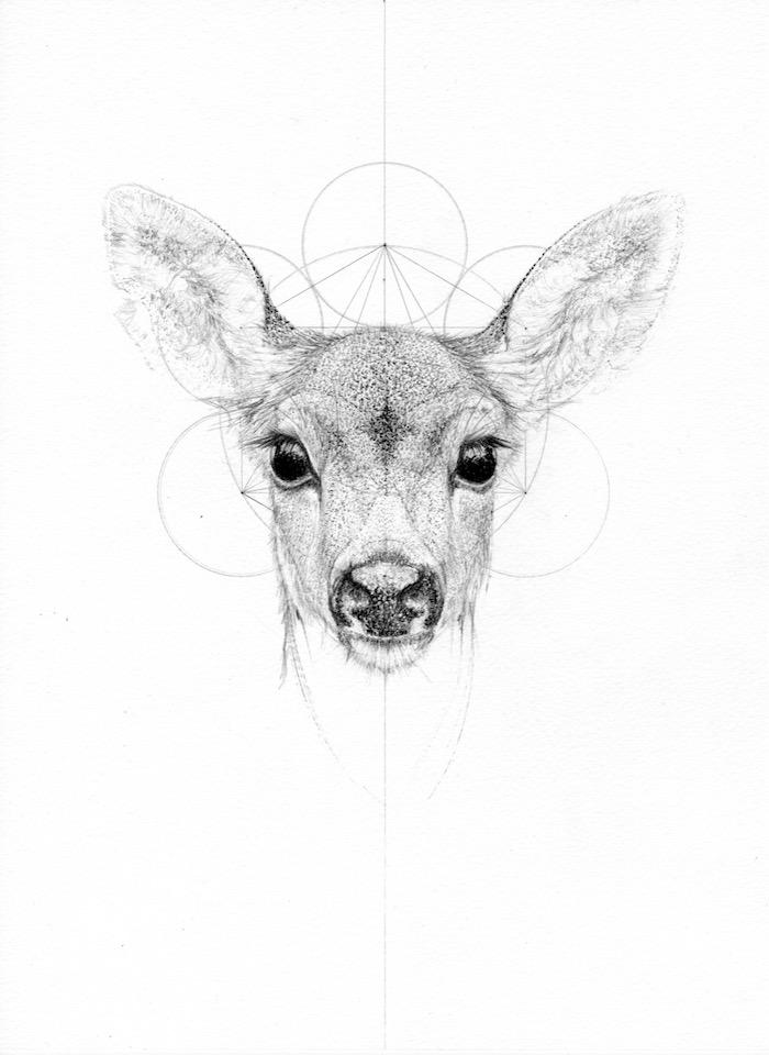 fine artist jessica albarn sketch drawing