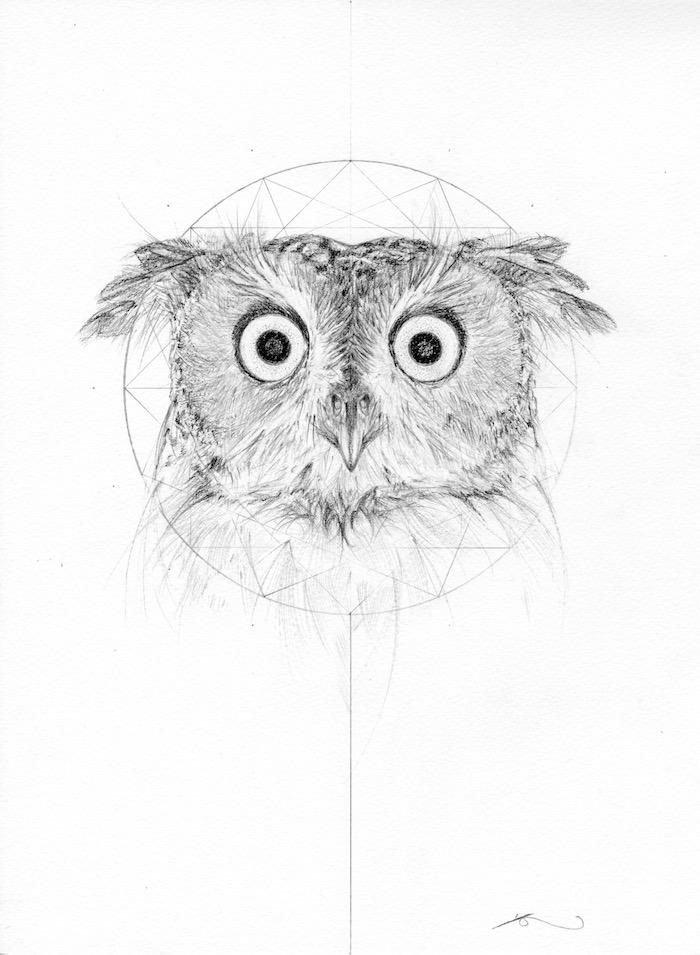 Jessica Albarn art owl sketch geomotry