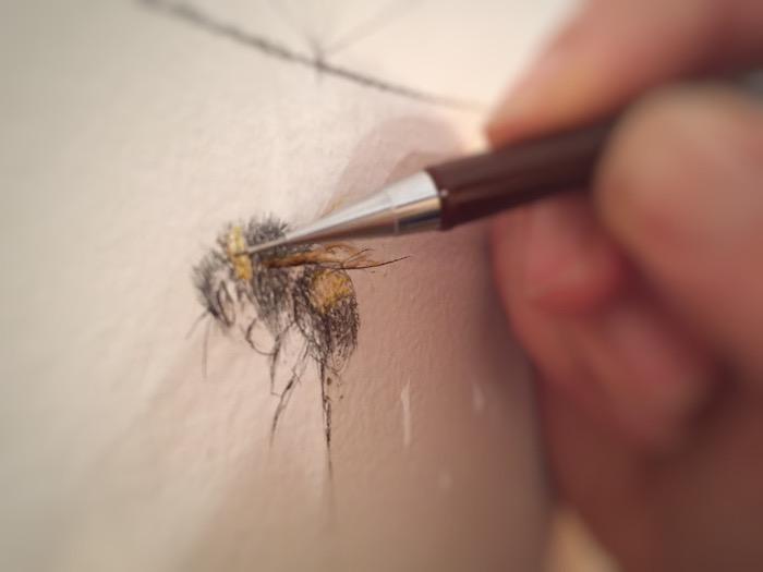 Jessica Albarn drawing bee sketch fine art sketch